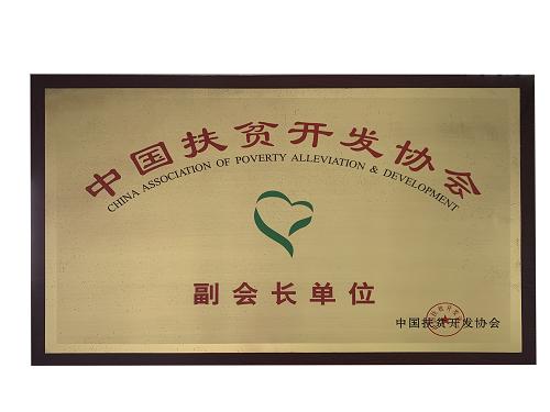 中国m6米乐app官网开发协会副会长