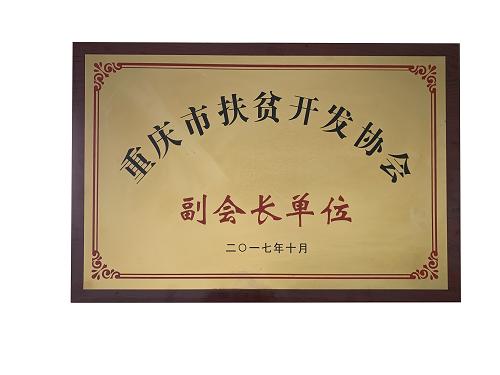重庆市m6米乐app官网开发协会副会长