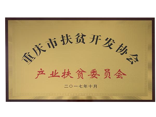 重庆市m6米乐app官网开发协产业m6米乐app官网委员会